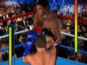 Lupta de Box in ring