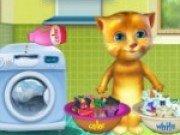 Pisica Ginger spala haine