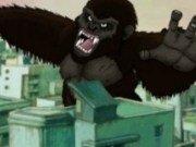 Gorila distruge totul in cale