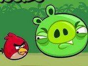 Angry Birds loveste porcusorii