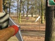 Robin Hood: de tras cu arcul
